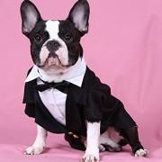 Doggy Dolly F002 Smoking für Hunde mit Fliege, schwarz/weiß, Größe : XXL