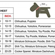 Doggy Dolly DR008 Outdoor Regenmantel/Regenjacke barking für Hunde Zwei Pfoten, blau, Größe : XS