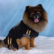 Doggy Dolly DRF010 Jogginganzug für Hunde VIP, schwarz, Winter, Größe : S