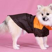 Doggy Dolly DR020 Regenjacke für Hunde Zwei Pfoten, orange/braun, Größe : XXS