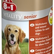 8in1 105664 Multi Vitamin Tabletten Senior, zur Nahrungsergänzung beim Hund, 70 Tabletten